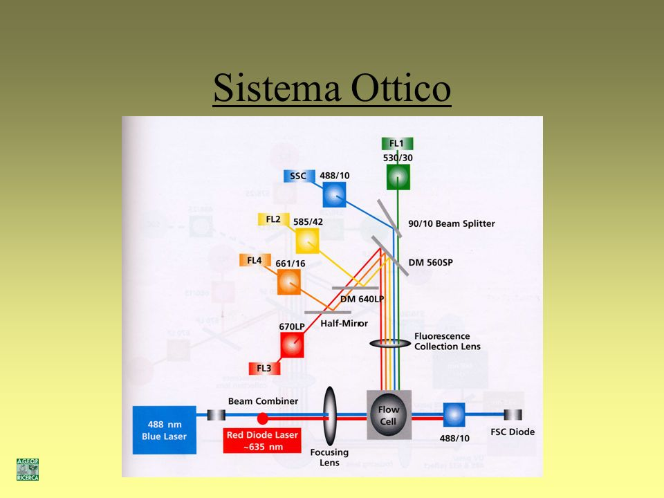 Sistema Ottico