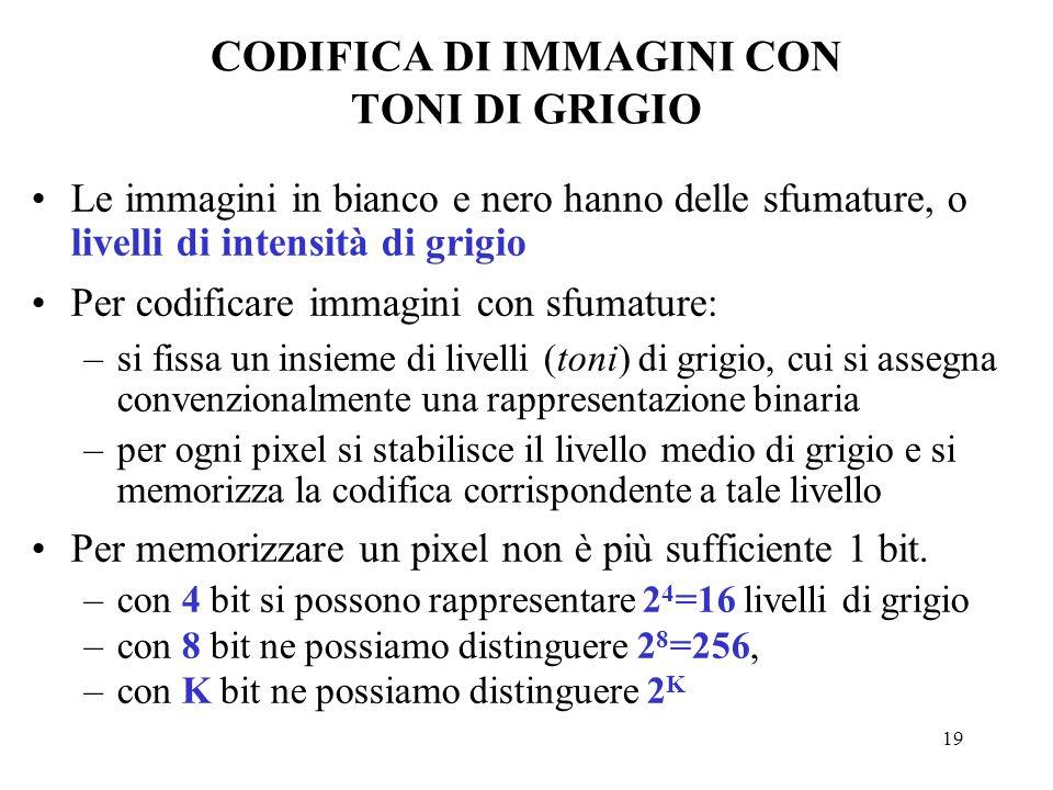 CODIFICA DI IMMAGINI CON TONI DI GRIGIO