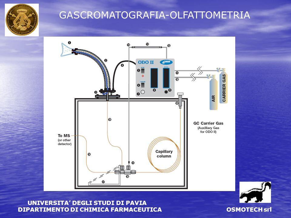 GASCROMATOGRAFIA-OLFATTOMETRIA
