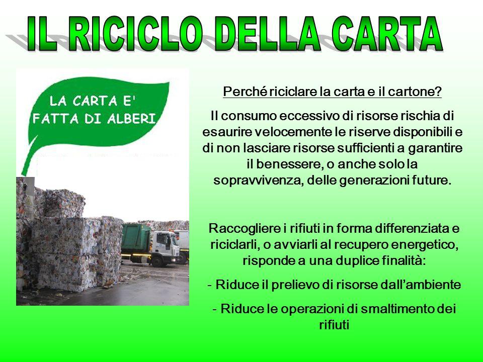 IL RICICLO DELLA CARTA Perché riciclare la carta e il cartone