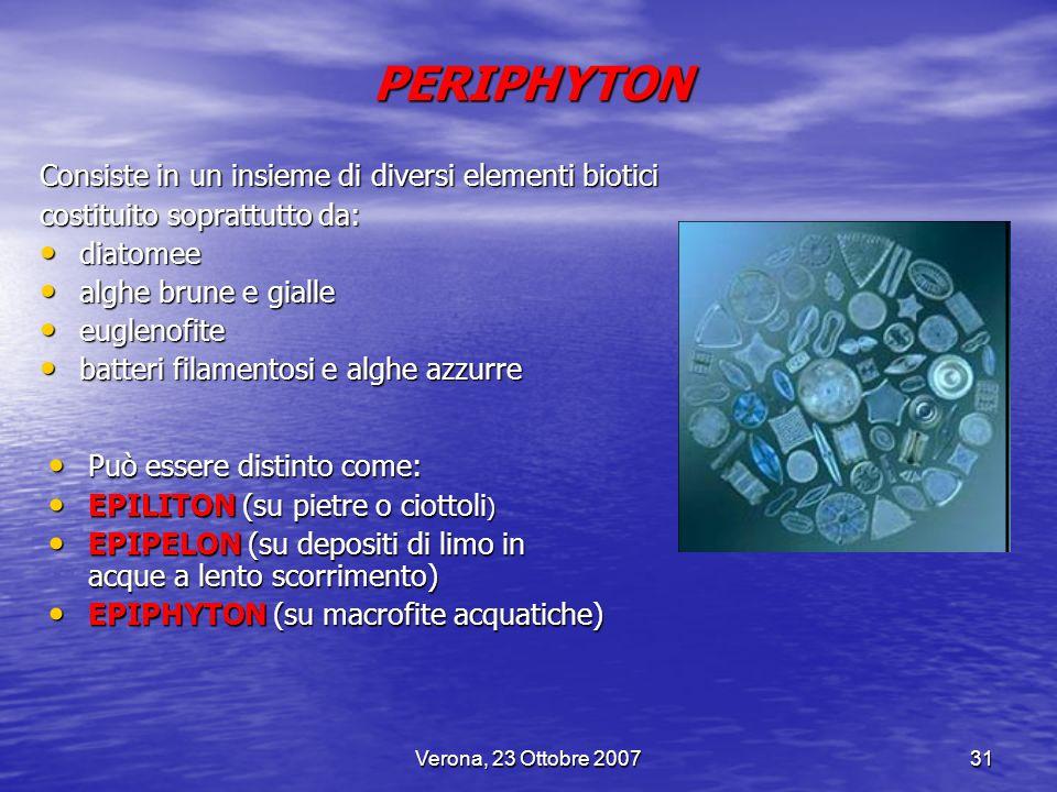 PERIPHYTON Consiste in un insieme di diversi elementi biotici