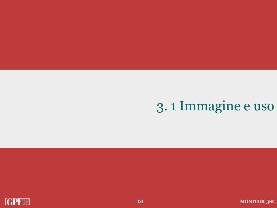 1 Immagine e uso