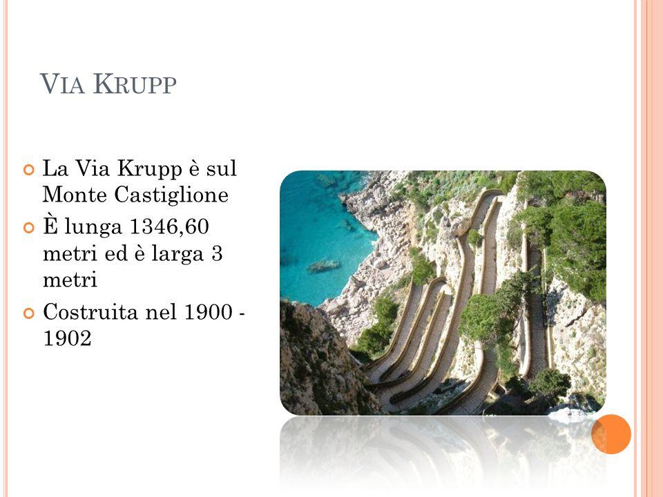 Via Krupp La Via Krupp è sul Monte Castiglione