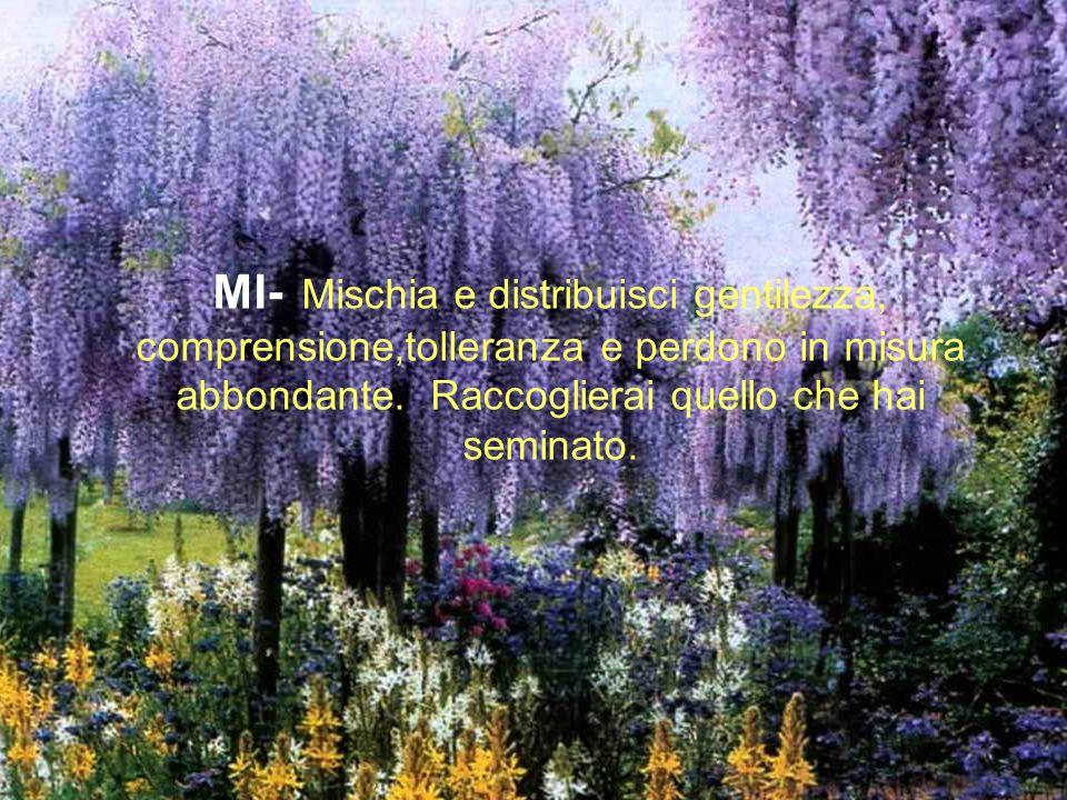 MI- Mischia e distribuisci gentilezza, comprensione,tolleranza e perdono in misura abbondante.