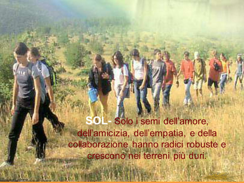 SOL- Solo i semi dell'amore, dell'amicizia, dell'empatia, e della collaborazione hanno radici robuste e crescono nei terreni più duri.
