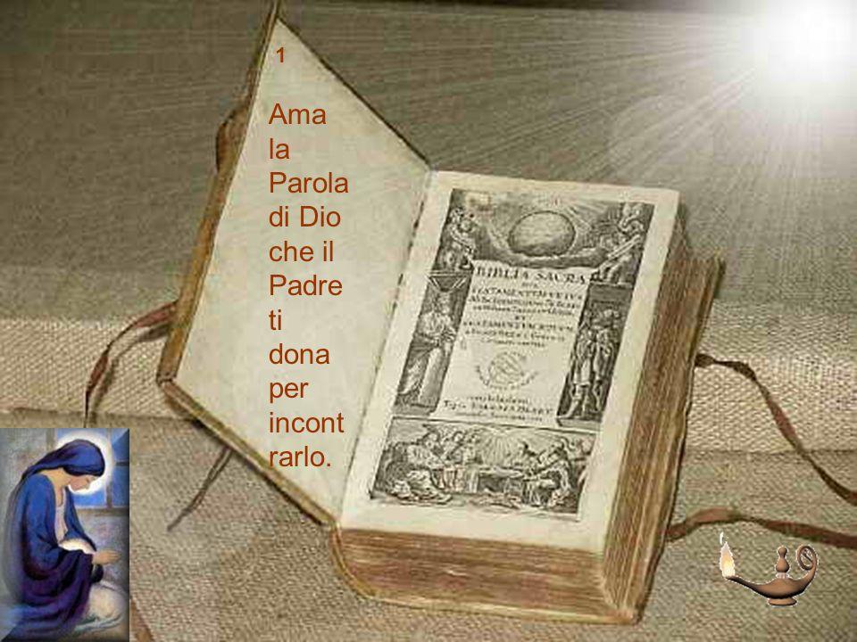 Ama la Parola di Dio che il Padre ti dona per incontrarlo.