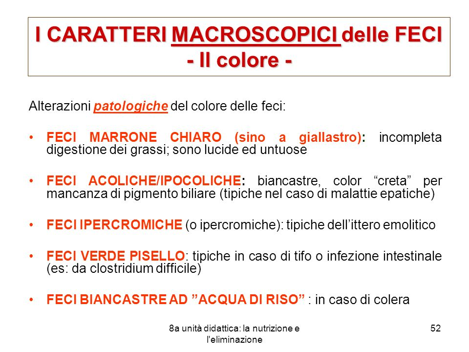 I CARATTERI MACROSCOPICI delle FECI - Il colore -