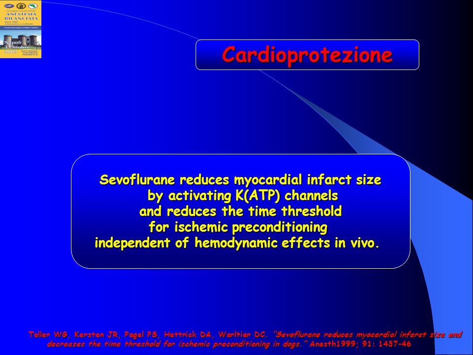 Cardioprotezione Sevoflurane reduces myocardial infarct size
