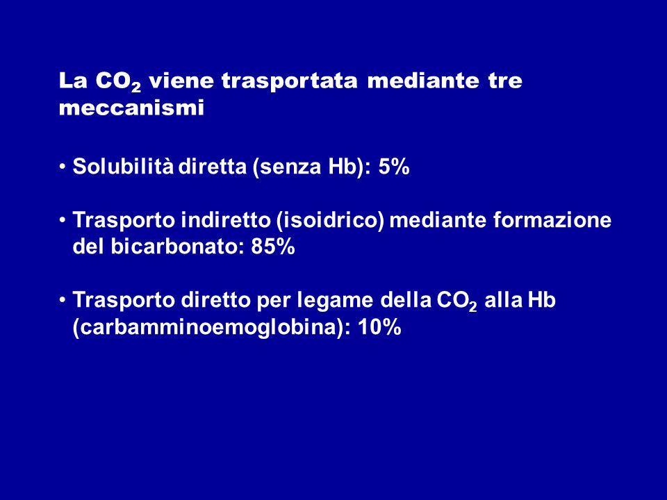 La CO2 viene trasportata mediante tre meccanismi