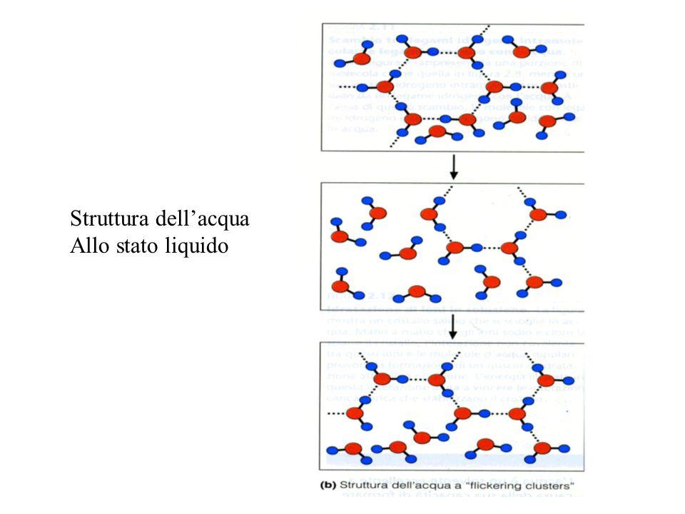 Struttura dell'acqua Allo stato liquido