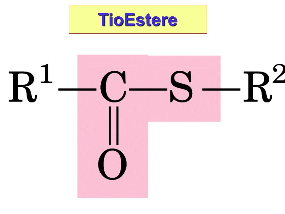 TioEstere