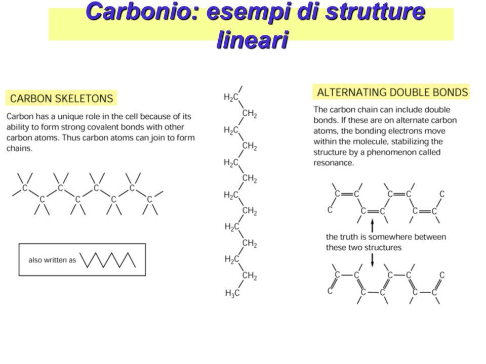 Carbonio: esempi di strutture lineari