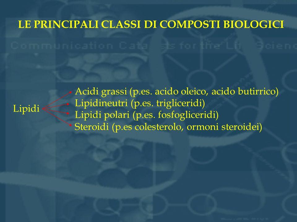 LE PRINCIPALI CLASSI DI COMPOSTI BIOLOGICI