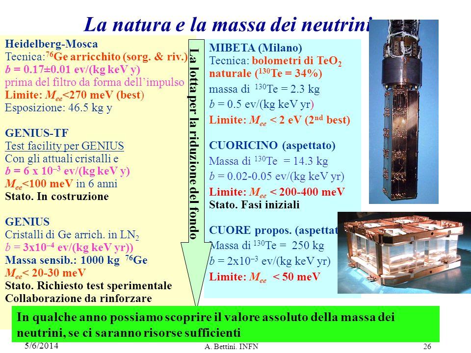 La natura e la massa dei neutrini