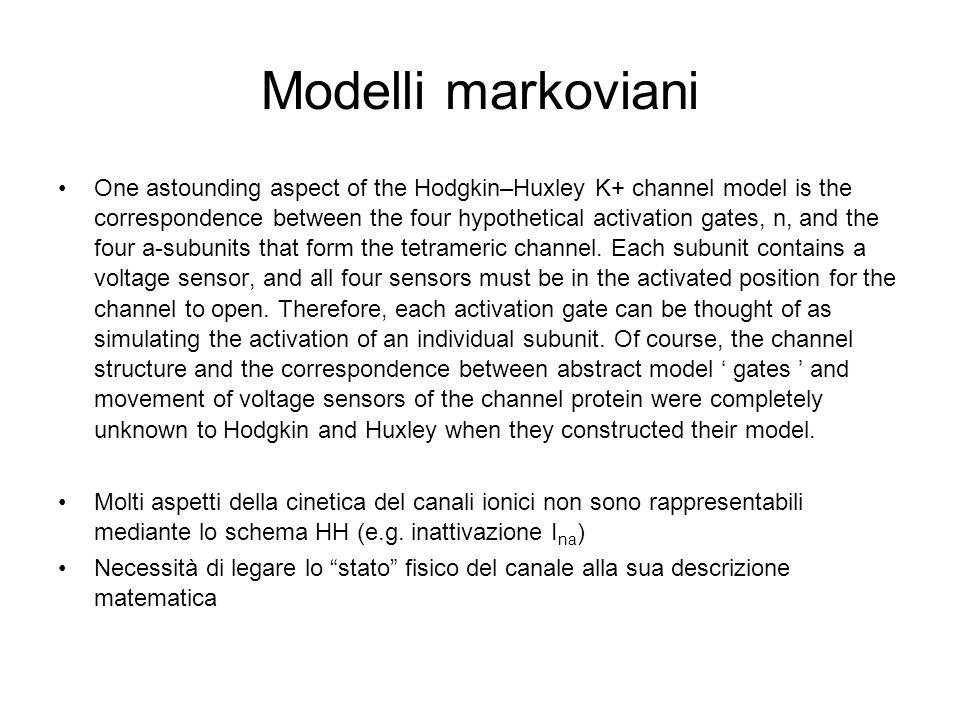 Modelli markoviani