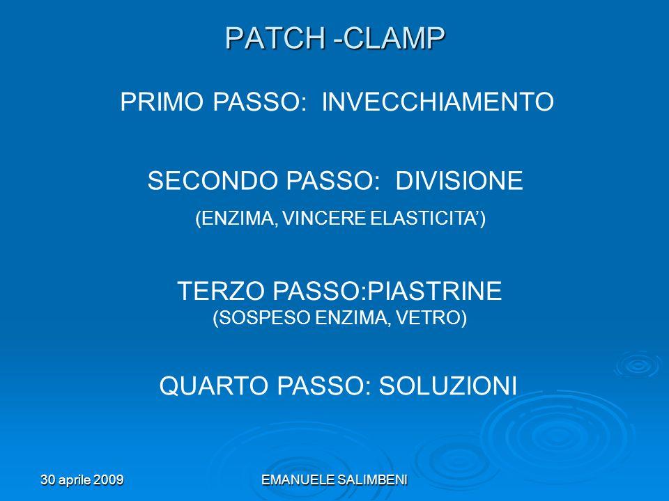 PATCH -CLAMP PRIMO PASSO: INVECCHIAMENTO SECONDO PASSO: DIVISIONE
