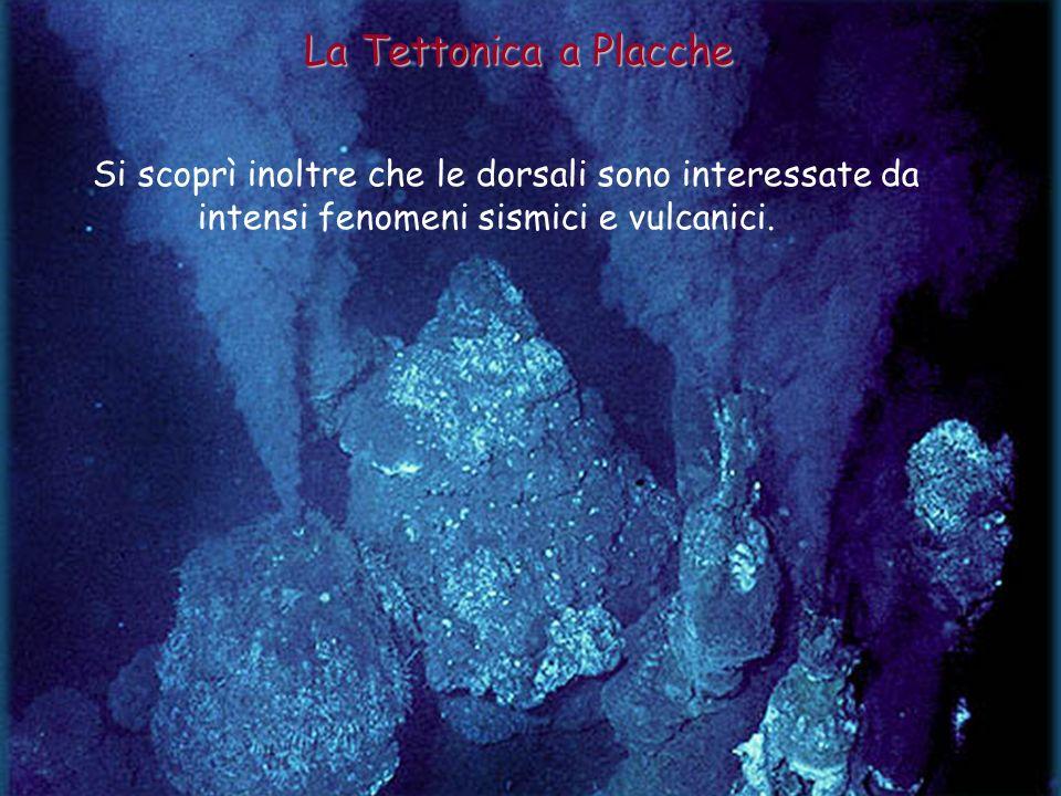 La Tettonica a Placche Si scoprì inoltre che le dorsali sono interessate da intensi fenomeni sismici e vulcanici.