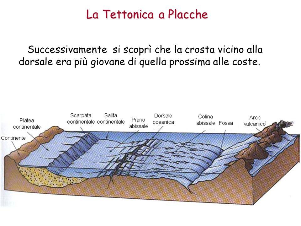La Tettonica a Placche Successivamente si scoprì che la crosta vicino alla dorsale era più giovane di quella prossima alle coste.