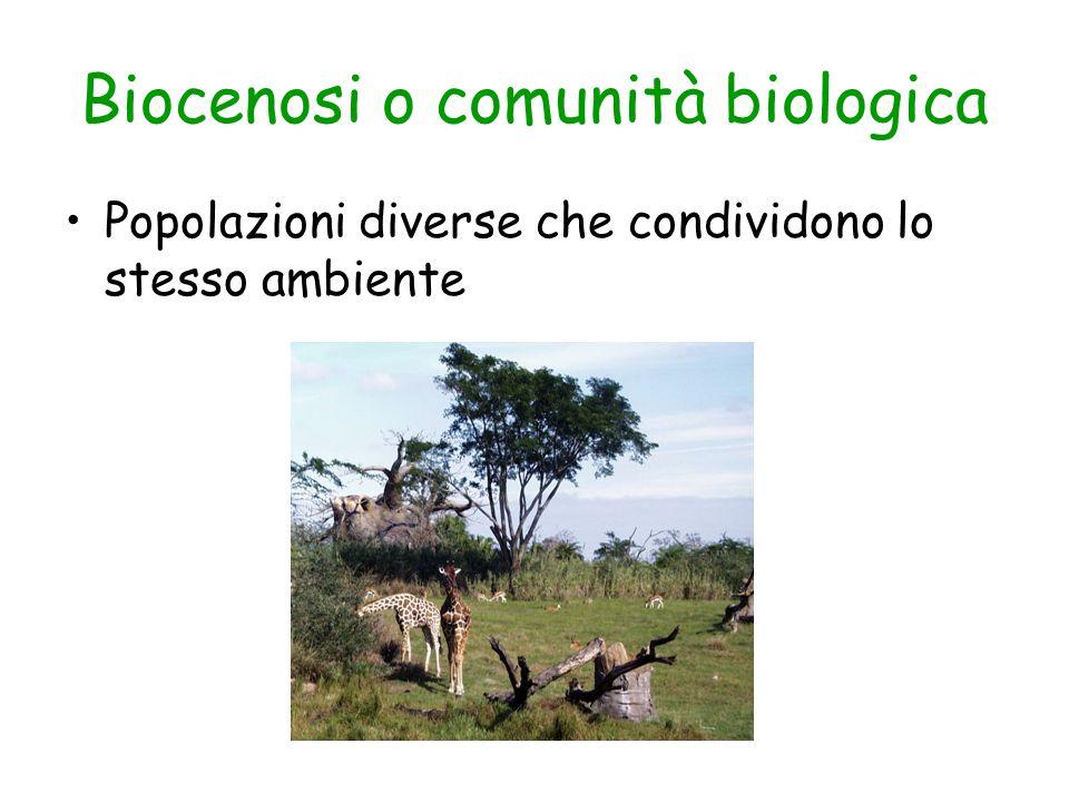 Biocenosi o comunità biologica