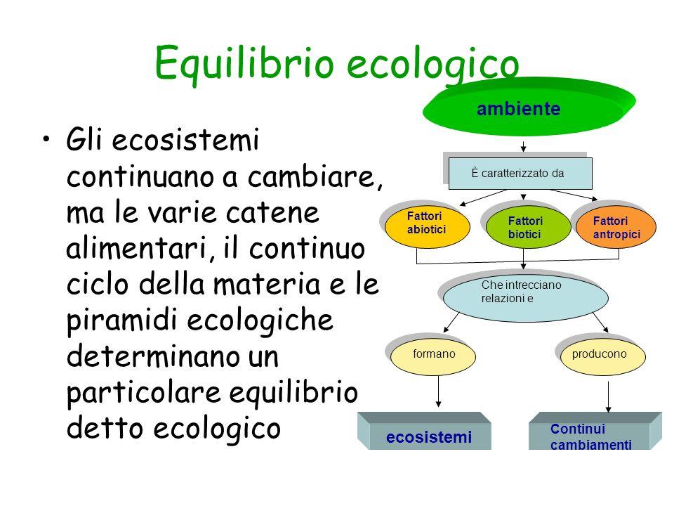 Equilibrio ecologico ambiente.