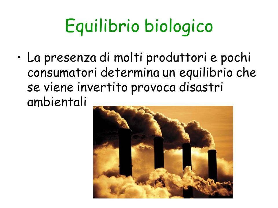 Equilibrio biologico La presenza di molti produttori e pochi consumatori determina un equilibrio che se viene invertito provoca disastri ambientali.