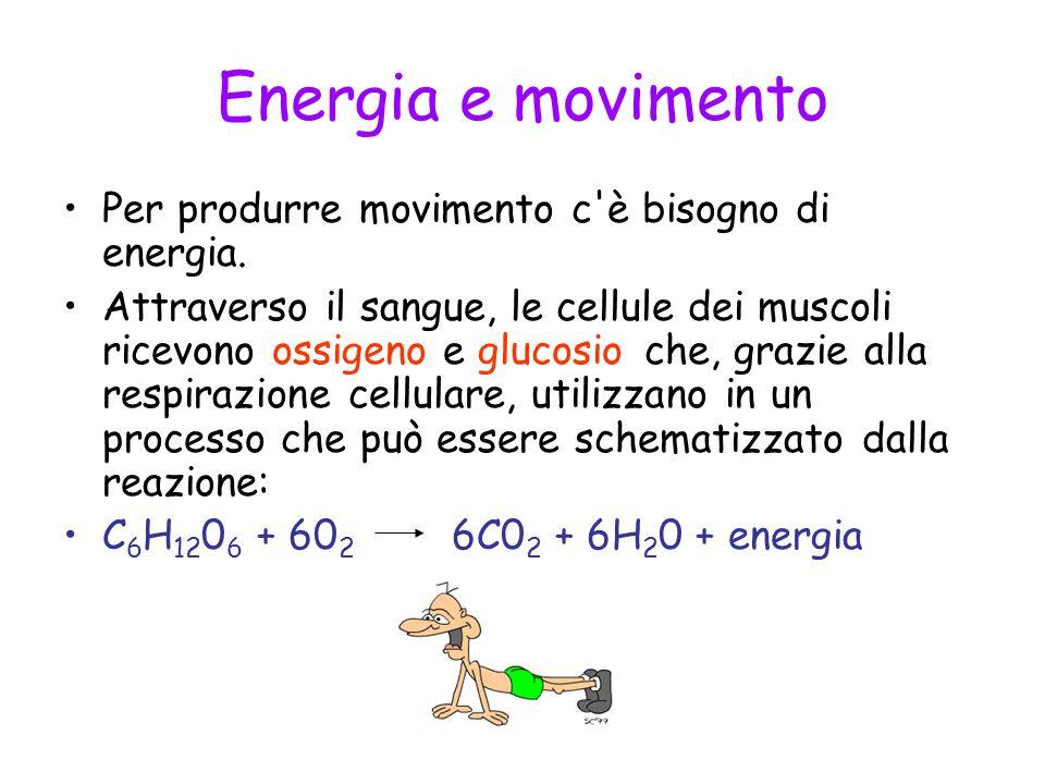 Energia e movimento Per produrre movimento c è bisogno di energia.