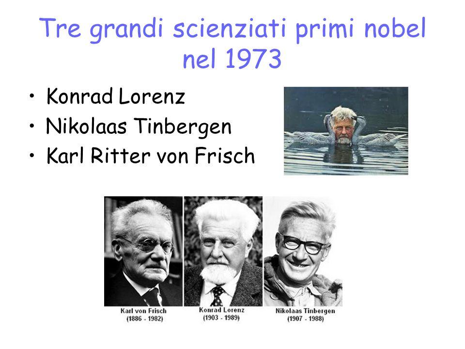 Tre grandi scienziati primi nobel nel 1973