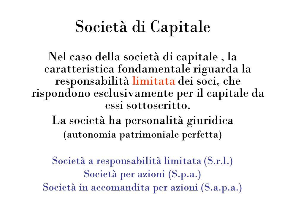 Società di Capitale