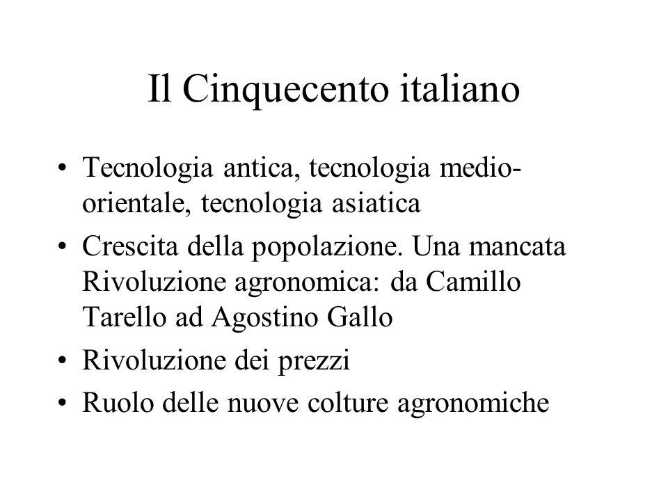 Il Cinquecento italiano