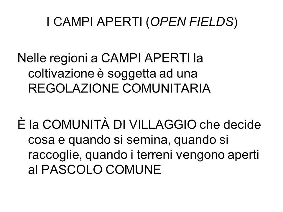 I CAMPI APERTI (OPEN FIELDS)