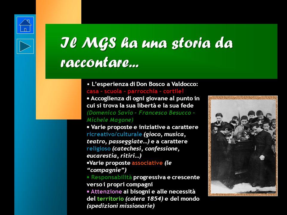 Il MGS ha una storia da raccontare...