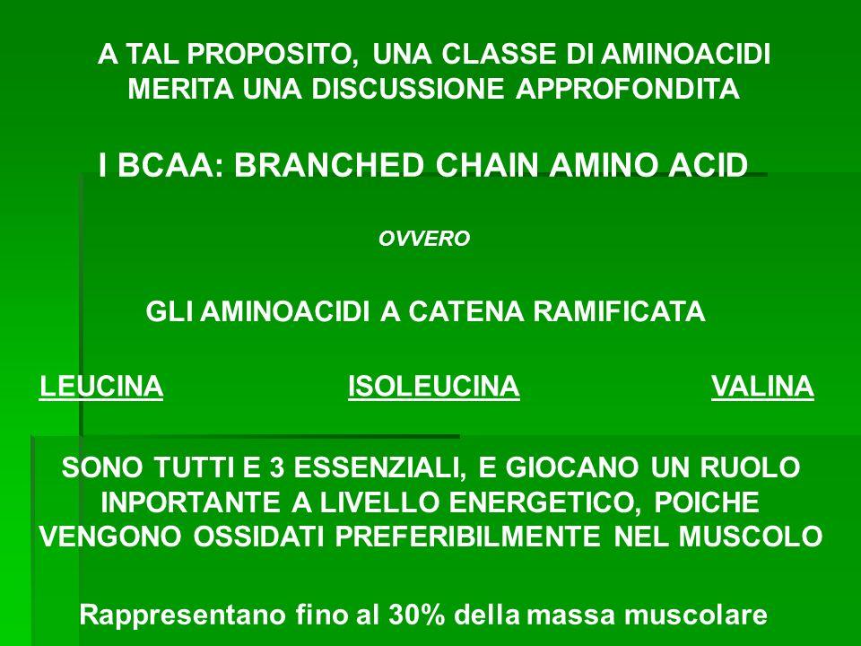I BCAA: BRANCHED CHAIN AMINO ACID GLI AMINOACIDI A CATENA RAMIFICATA