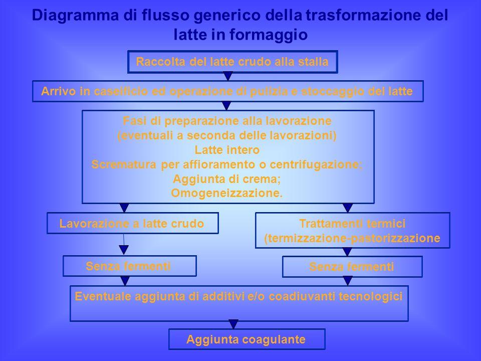 Diagramma di flusso generico della trasformazione del latte in formaggio