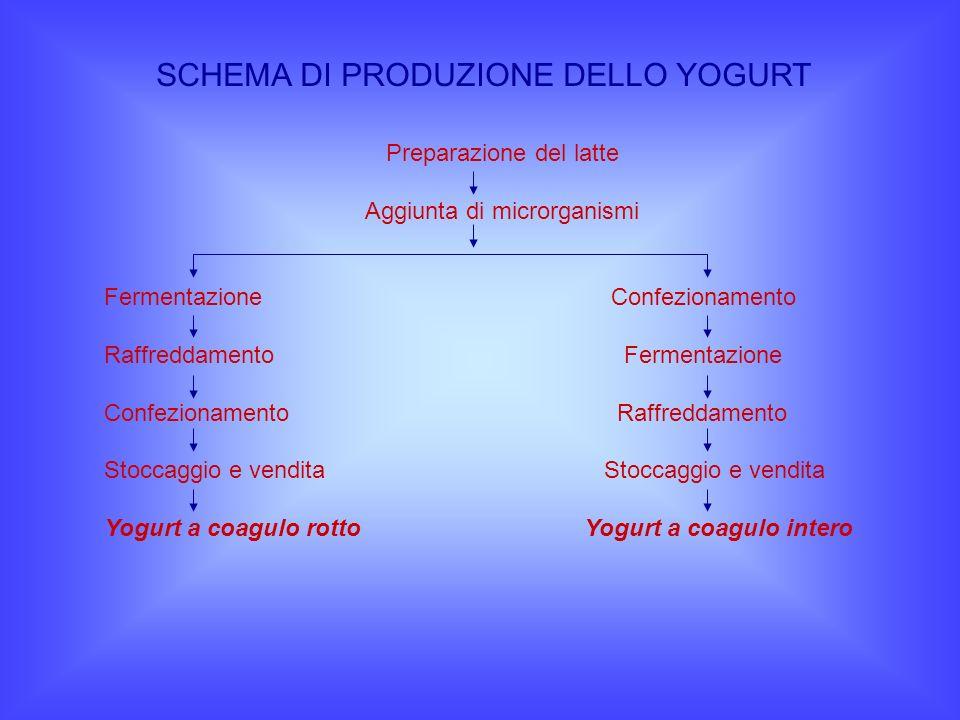 SCHEMA DI PRODUZIONE DELLO YOGURT