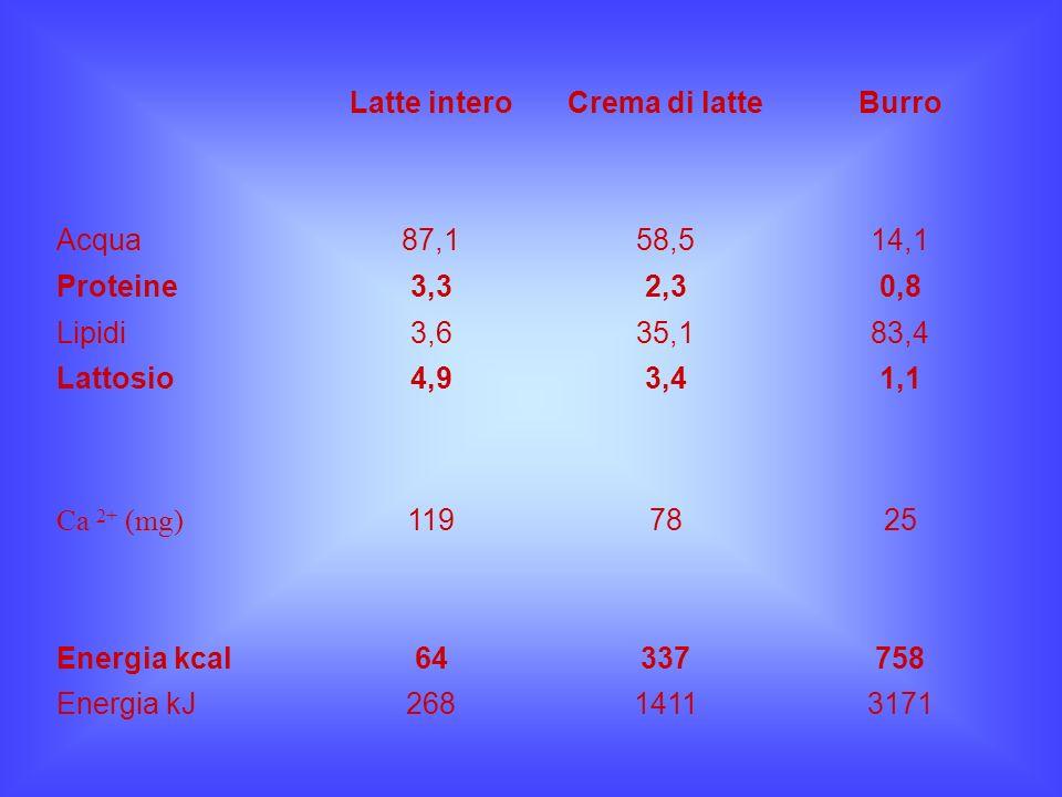 Latte intero Crema di latte. Burro. Acqua. 87,1. 58,5. 14,1. Proteine. 3,3. 2,3. 0,8. Lipidi.