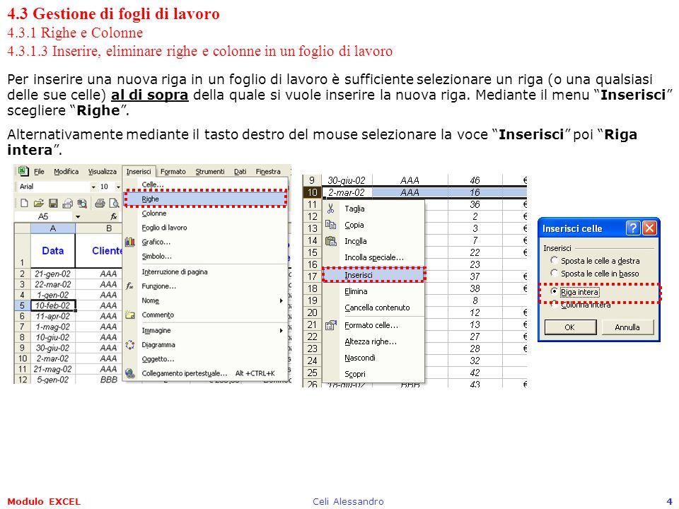 4. 3 Gestione di fogli di lavoro 4. 3. 1 Righe e Colonne 4. 3. 1