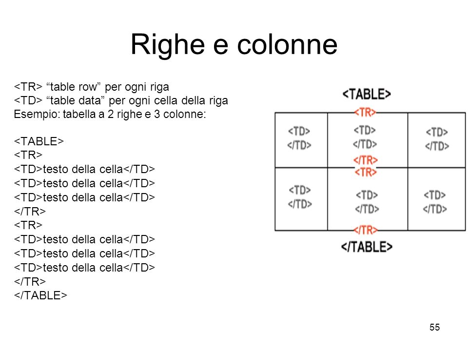 Righe e colonne <TR> table row per ogni riga