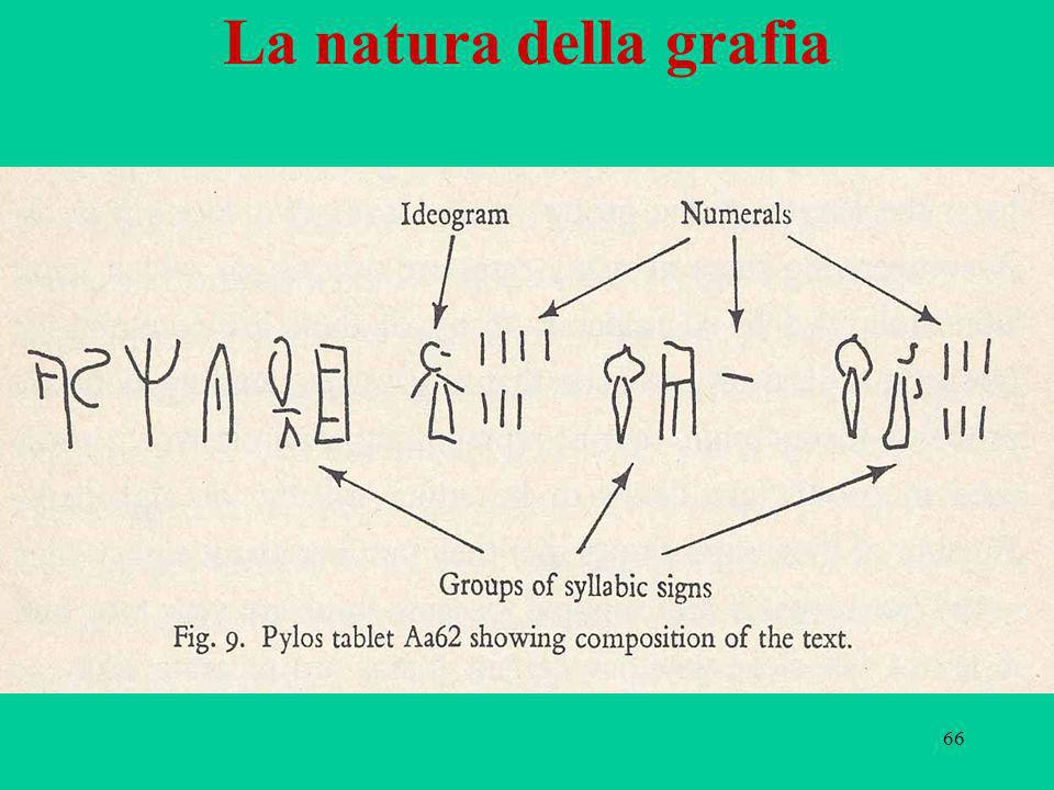 La natura della grafia