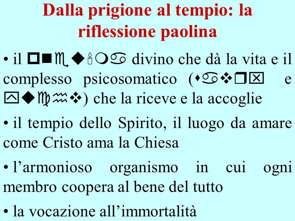Dalla prigione al tempio: la riflessione paolina