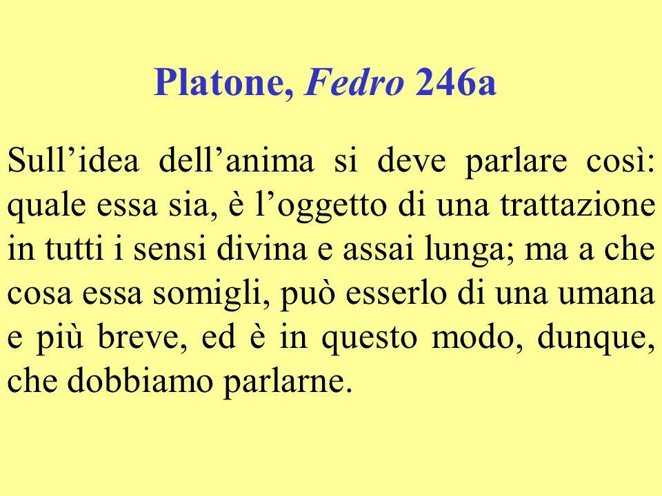 Platone, Fedro 246a