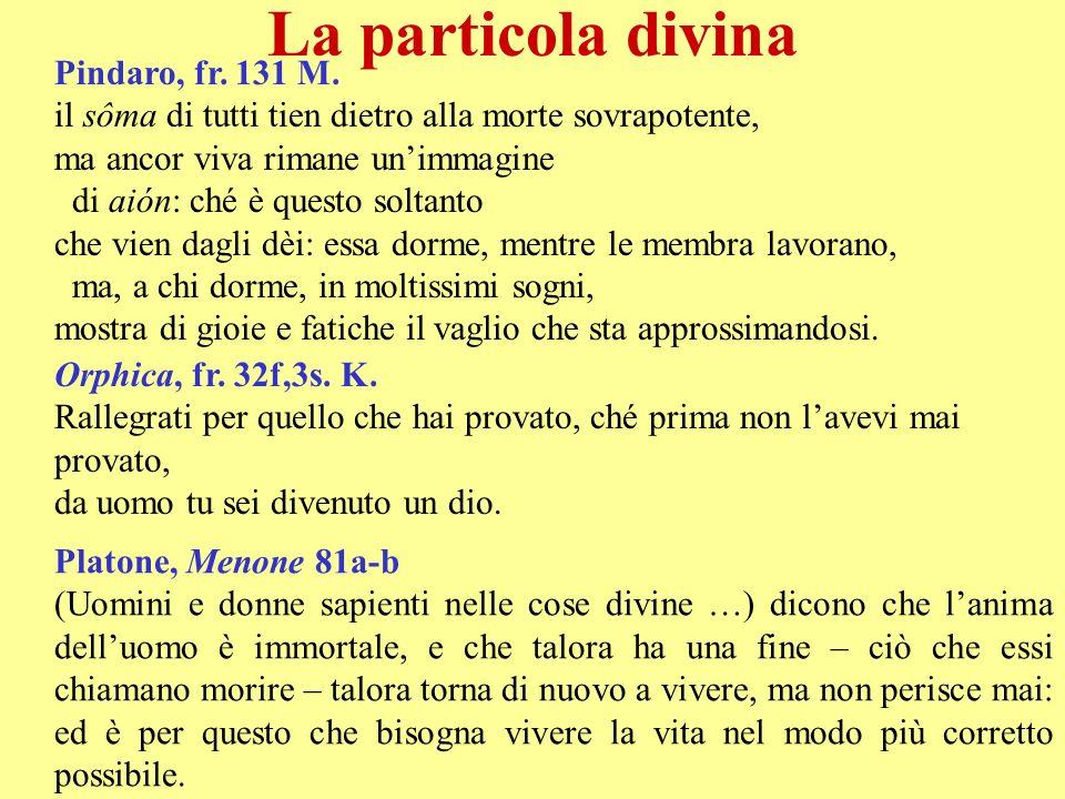 La particola divina Pindaro, fr. 131 M.