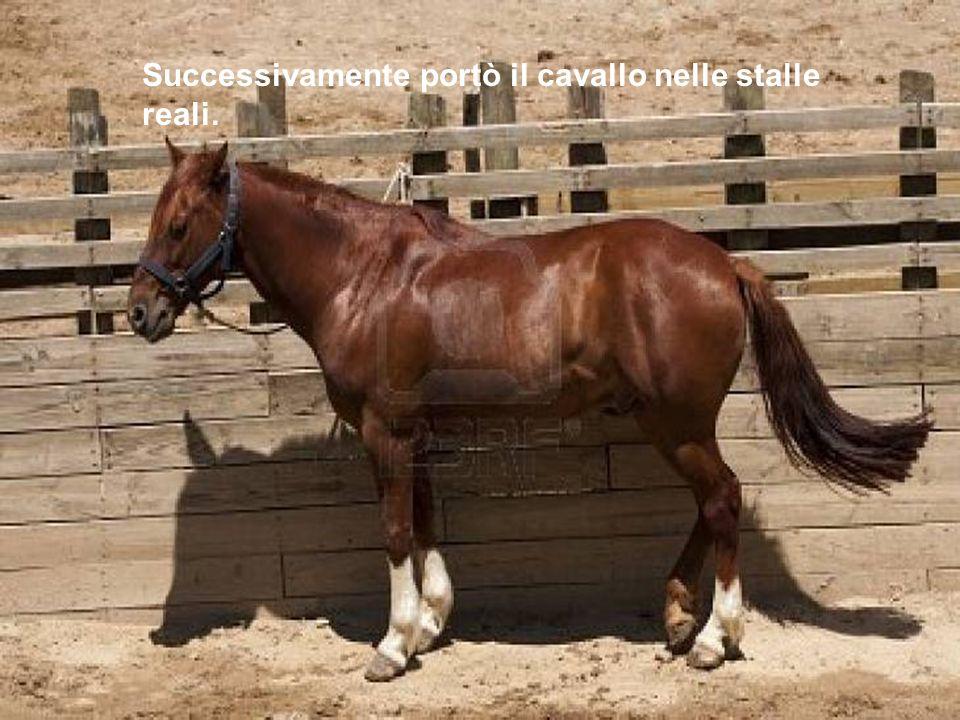 Successivamente portò il cavallo nelle stalle reali.