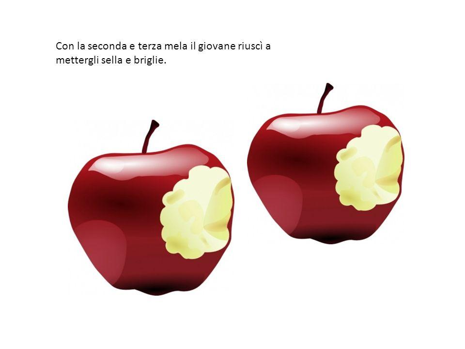 Con la seconda e terza mela il giovane riuscì a mettergli sella e briglie.