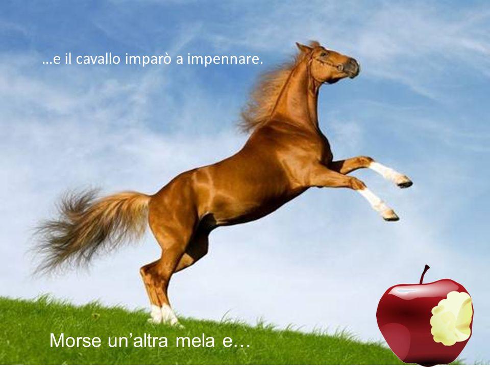 …e il cavallo imparò a impennare.