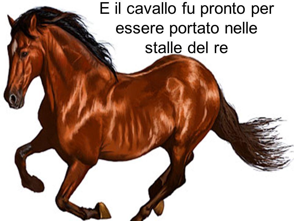 E il cavallo fu pronto per essere portato nelle stalle del re