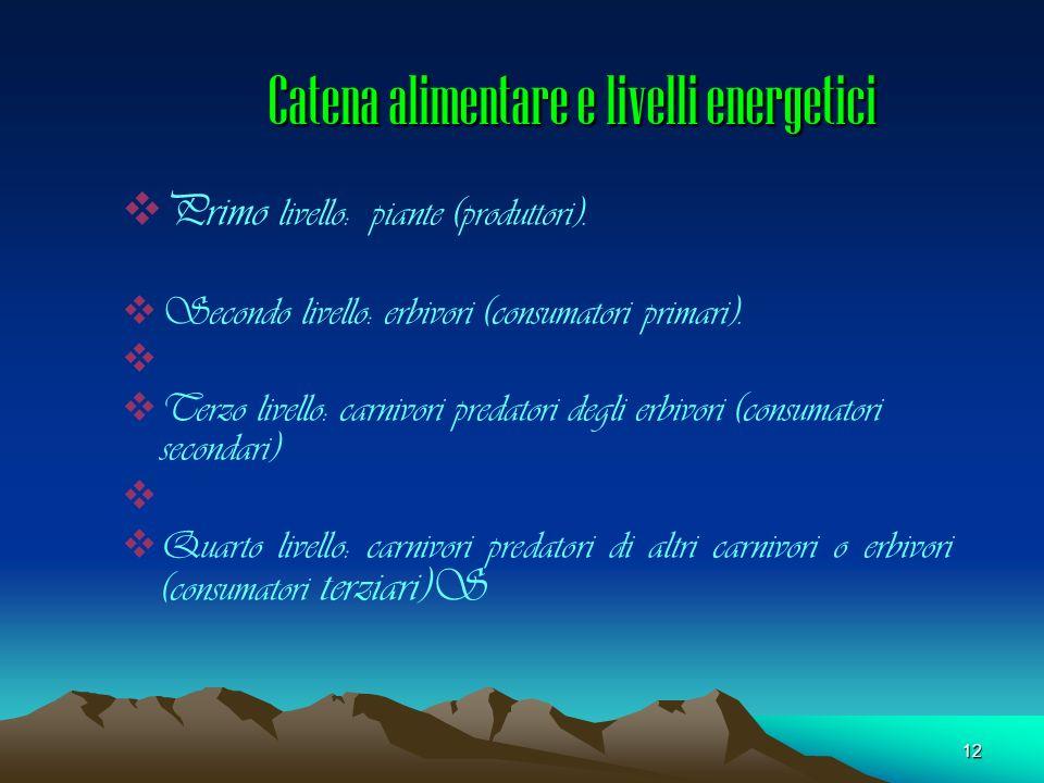 Catena alimentare e livelli energetici