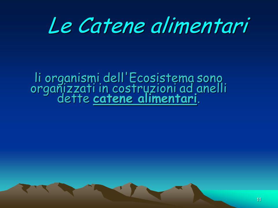 Le Catene alimentari li organismi dell Ecosistema sono organizzati in costruzioni ad anelli dette catene alimentari.