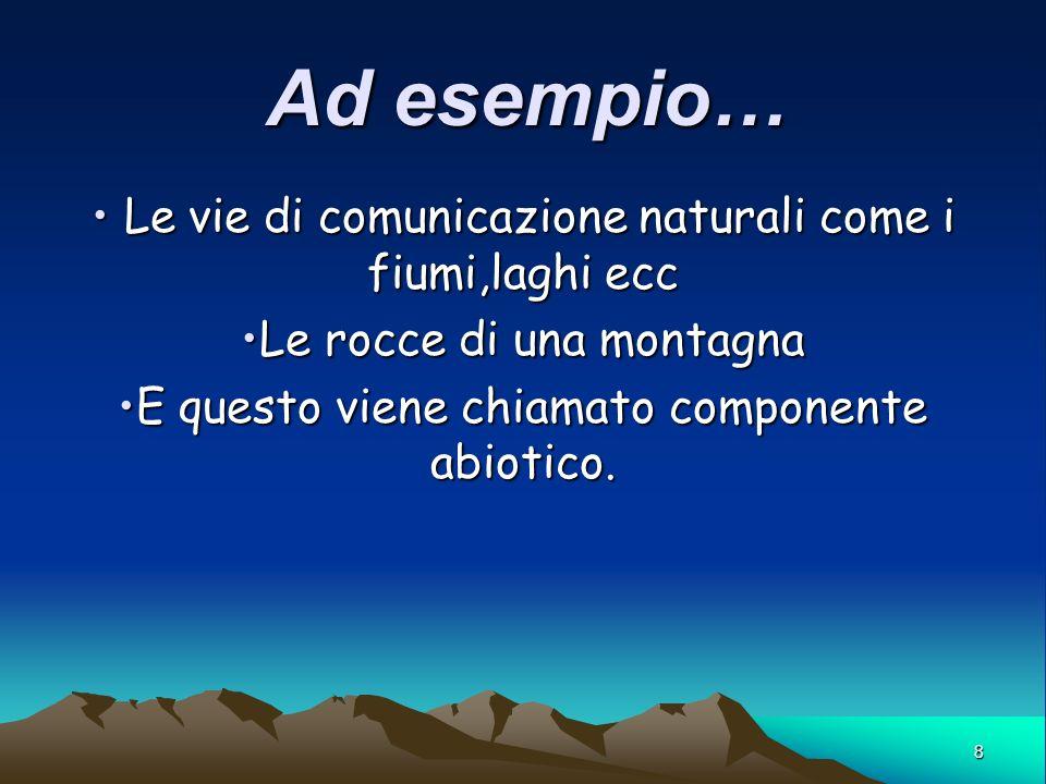 Ad esempio… Le vie di comunicazione naturali come i fiumi,laghi ecc