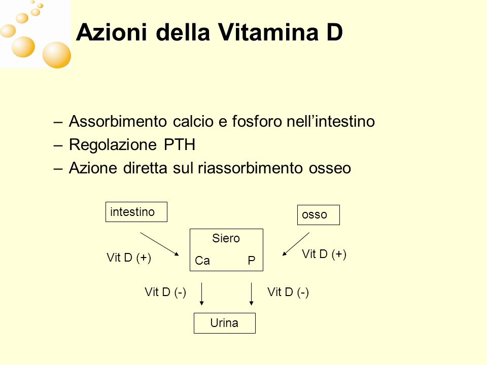 Azioni della Vitamina D