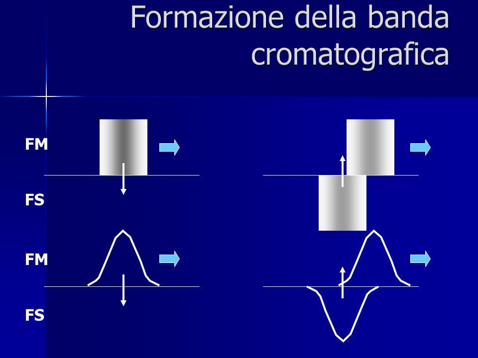 Formazione della banda cromatografica